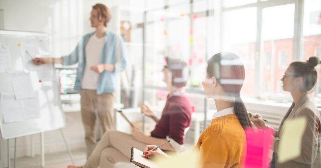 Entenda o que é um ecossistema de empregabilidade e como usá-lo na sua empresa